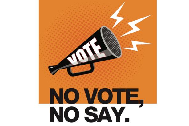 no vote no say