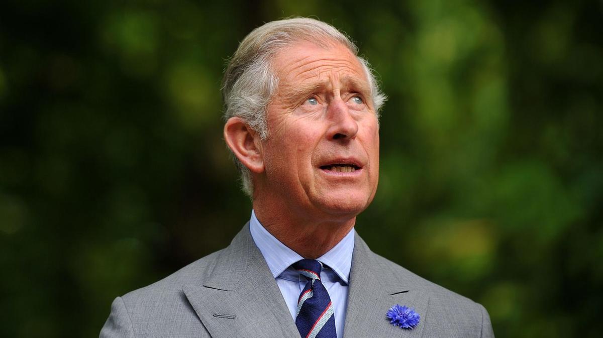 Prince Charles grey hair